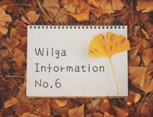 ウィルガインフォメーションNo.6(お客様感謝祭はじまりました!ほか)