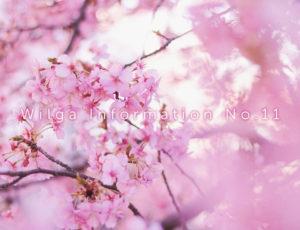 ウィルガインフォメーションNo.11(5月2日〜キャンペーン始まります!)