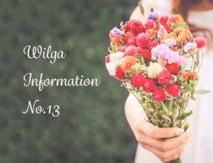 ウィルガインフォメーションNo.13(美髪365day WILGAが美をサポートほか)