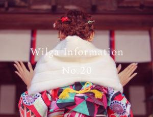 ウィルガインフォメーションNo.20(2周年記念キャンペーン)