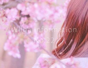 ウィルガインフォメーションNo.22(2周年記念キャンペーン)